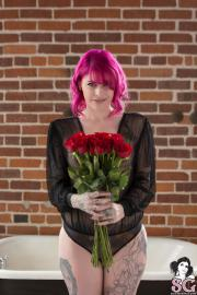 Cessie - Rose Red (29.12.17)